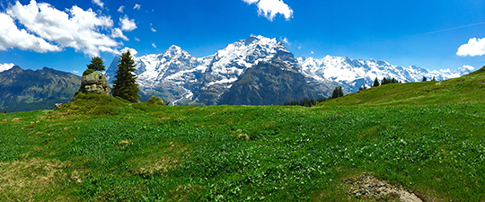 Eiger, Mönch and the Jungfrau   viewed from Mittleberg   on the way up to Mürren   June 2015