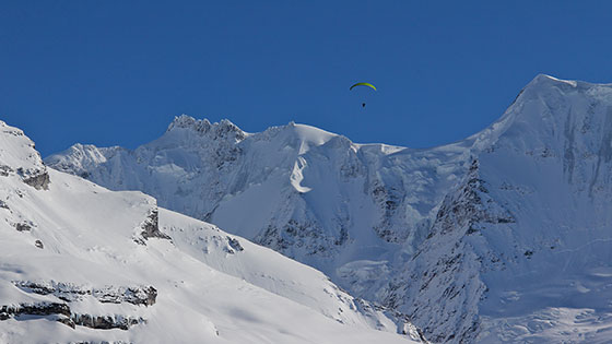 Paraglider near Gletscherhorn   viewed from Mürren   February 2013