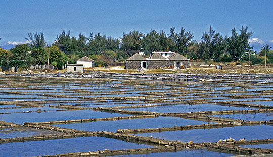 Tamarin Salt Fields