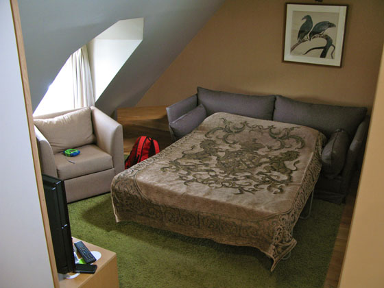The living room area has a sofa, which can be unfolded to accomodate 2 extra guests