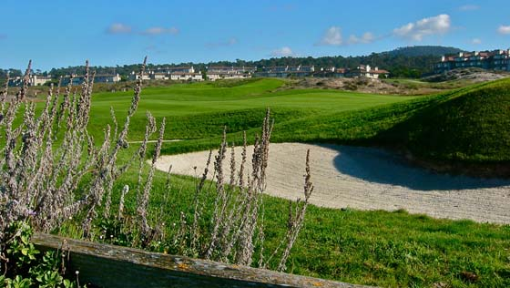Spanish Bay golf course and resort